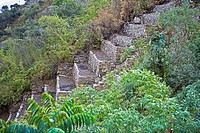 Steps of an old ruin, Choquequirao, Inca, Cusco Region, Peru
