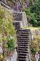 High angle view of ruined steps, Aguas Calientes, Mt Huayna Picchu, Machu Picchu, Cusco Region, Peru