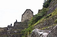 Low angle view of ruins, Aguas Calientes, Mt Huayna Picchu, Machu Picchu, Cusco Region, Peru