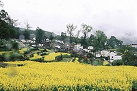 Qinyuan village in spring, Wuyuan County, Jiangxi Province, People´s Republic of China
