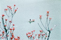 Elevated view of a man standing in a boat on Lake on Dayushan Island, Sansha Town, Ningde City, Fujian Province, People´s Republic of China, FOR EDITO...