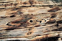 Close_up of a wooden plank, Xiaozuo ship repairing field, Huian County, Fujian Province of People´s Republic of China