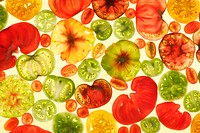Slices of various tomatoes on colored background, overhead view, studio shot