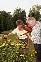 Couple watering flowers