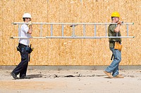 Builders in hardhats carrying ladder, side view