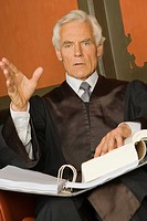 Portrait of a lawyer arguing