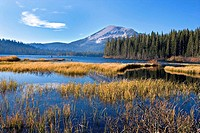 Grass and reeds on the shore of Lake Mamie, Mammoth Lakes Basin, Mammoth, California