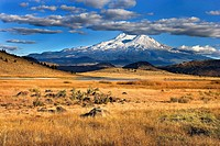 Autumn grasses in prairie with Mt. Shasta in the distance, California, USA
