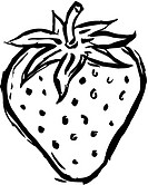 A black and white drawing of one strawberry