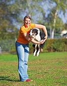 Agility : Border Collie - jumping restrictions: Tierratgeber-Bücher / animal guidebooks