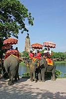 Thailand, Ayutthaya, wade Ratchaburana, ruins, tourists, elephants, rides,