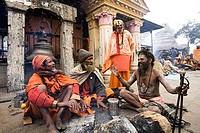 Four sadhus outside a temple at a religious festival, Maha Shivaratri, Kathmandu, Nepal
