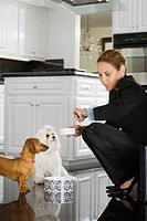 Hispanic businesswoman feeding dogs