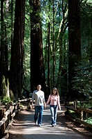 Asian couple walking in woods