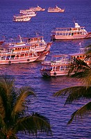 Tour boats, Pattaya. Thailand