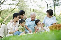 Family outdoors in park having picnic