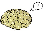 An illustration of a thinking brain on a white background