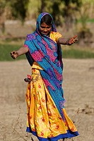 Women dancing in the field. Rajasthan, India