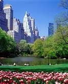 POND CENTRAL PARK. SOUTH MIDTOWN. MANHATTAN NEW YORK. USA