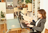 young business woman using laptop at home