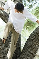 Man climbing on tree trunk, head down, front view