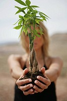 Woman with her arms outstretched holding a bamboo plant