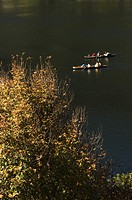Group of people boating in a lake