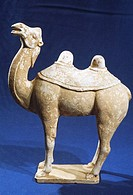 White pottery camel in Tang Dynasty