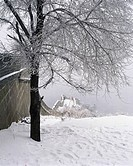 Winter scene of snow covered trees and walls, Beijing