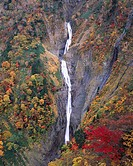 Red Leaves, Cliff, White, View from Hachiro slope, Waterfall of Shomyo, Tateyama, Toyama, Japan