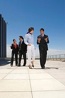 Businesspeople talking on roof