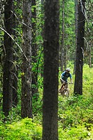 Man mountain biking on Oasis, Rossland, British Columbia, Canada