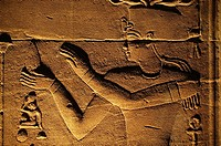 Egypt - Aswan - Philae temple