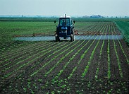 Tractor, mounted boom sprayer spraying early post_emergence sugar beet crop.