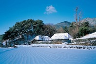 Farm Village In Winter,Jeonbuk,Korea