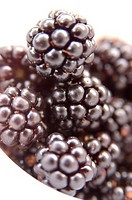 Blackberries in bowl (thumbnail)