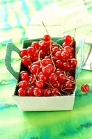 punnet of redcurrants