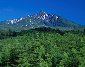Fresh green Blue sky Forest Fresh green Rishiri mountain Numaura Rishiri island Hokkaido Japan