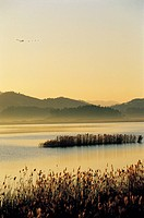 Gocheonamho Lake,Jeonnam,Korea