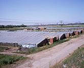 Agriculture, Haus, Shenyang, Liaoning, China