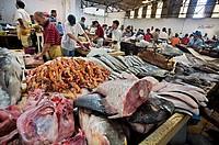 Fish Market. Tangier. Morocco