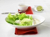 Pointed cabbage with lime and cheese sauce