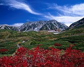 Murodo, Red Leaves, Tateyama mountain range, Tateyama, Toyama, Japan
