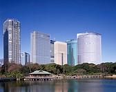 Hamarikyu Shiosaito, Building Tokyo Japan Sky Scraper Business Blue sky Building