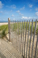 Weathered wooden fence on sand dune