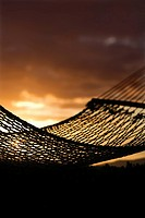 Close_up of hammock silhouette against ocean sunset in Maui, Hawaii, USA