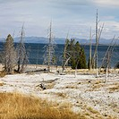 Barren shoreline at Yellowstone National Park, Wyoming.