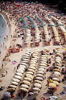 Beach with rows of umbrellas and bathers Elba Italy