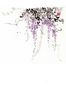 Japanese wisteria, ink brush painting, white background, cut out, copy space