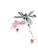 Branch of cherry blossoms, ink brush painting, white background, cut out, copy space